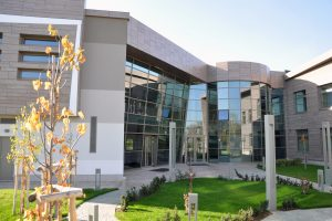 European College of Economics and Management